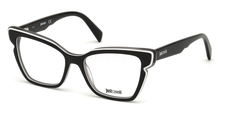 005 JC0817 Glasses, Just Cavalli
