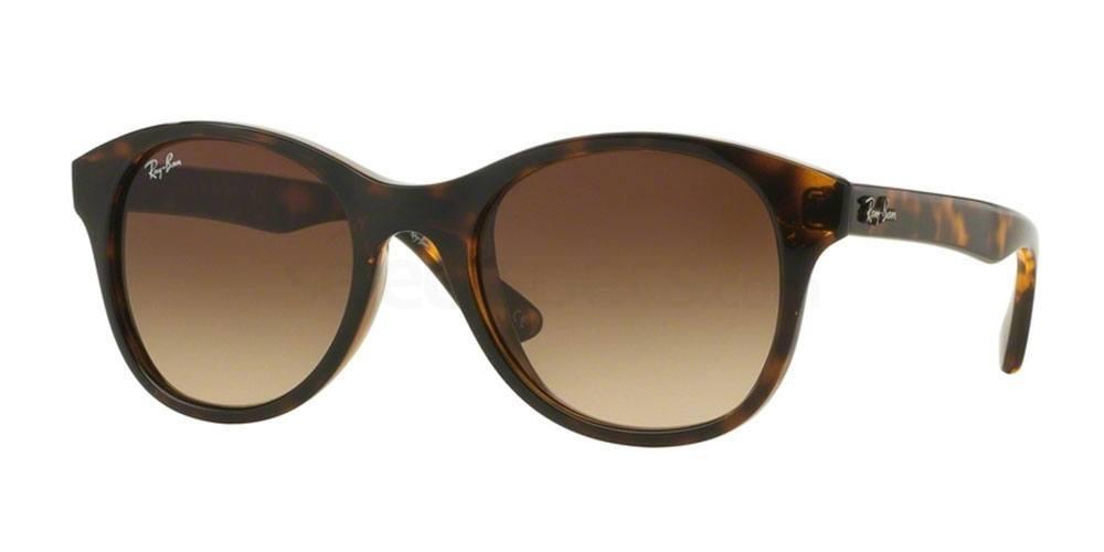 710/13 RB4203 Sunglasses, Ray-Ban