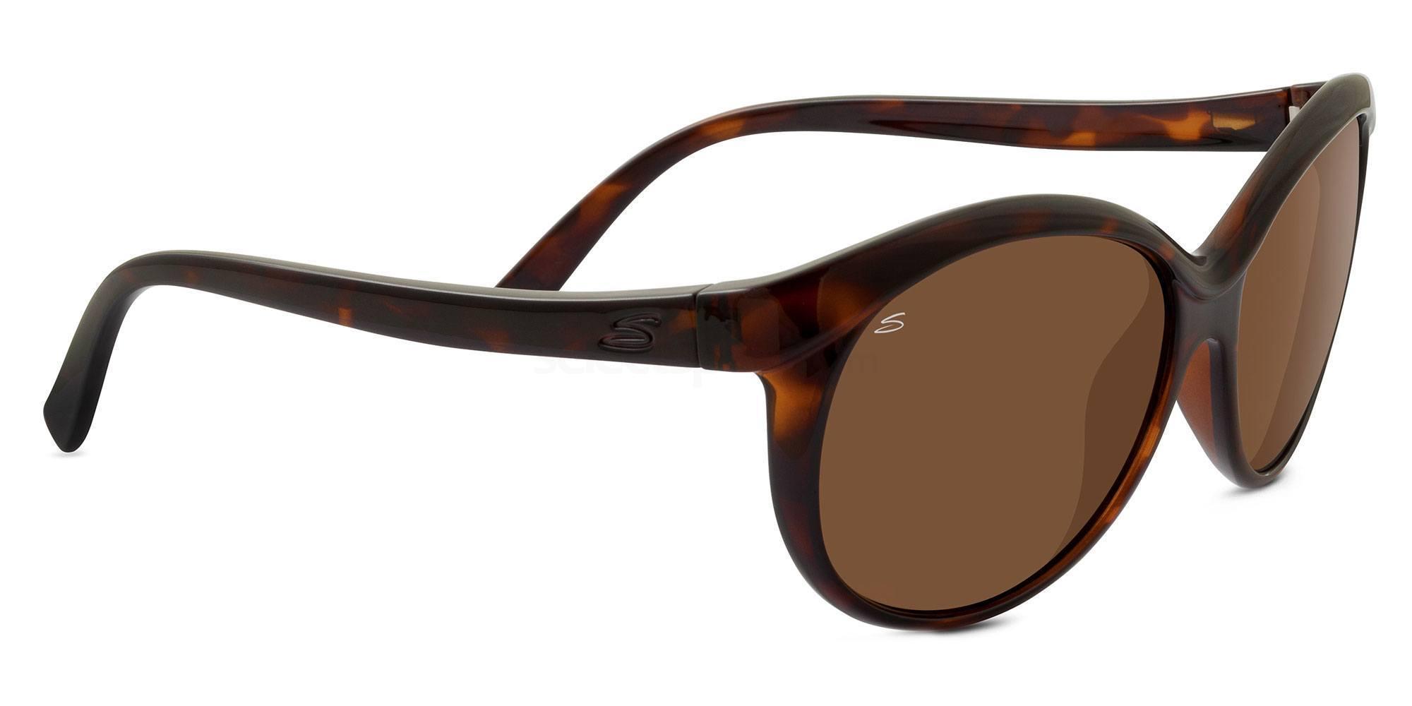 8188 Cosmopolitan CATERINA Sunglasses, Serengeti
