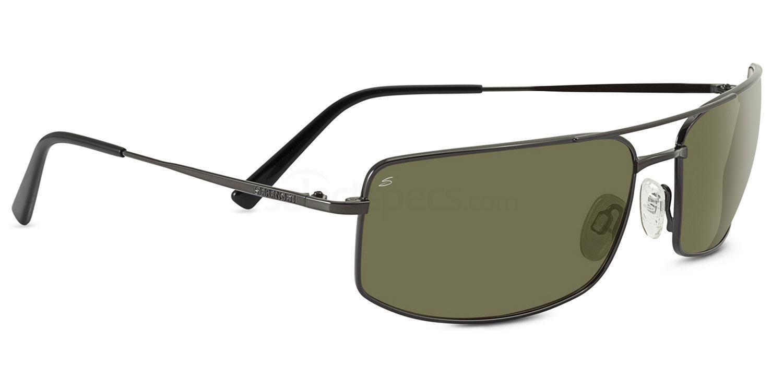 8303 Classics TREVISO Sunglasses, Serengeti