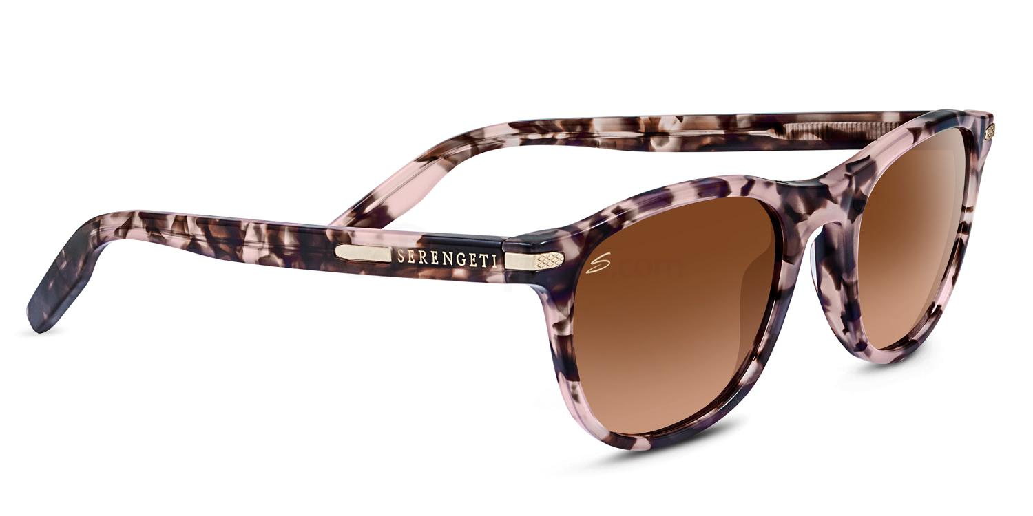 Sergenti Way-farer sunglasses
