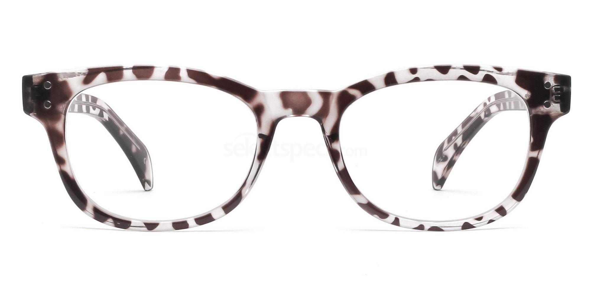 Col.03 2249 Animal Print Glasses, Savannah