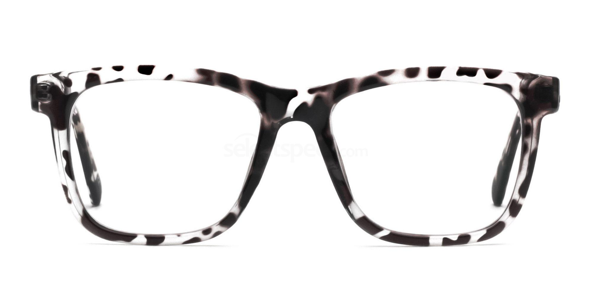 COL.03 2444 - Animal Print Glasses, Savannah