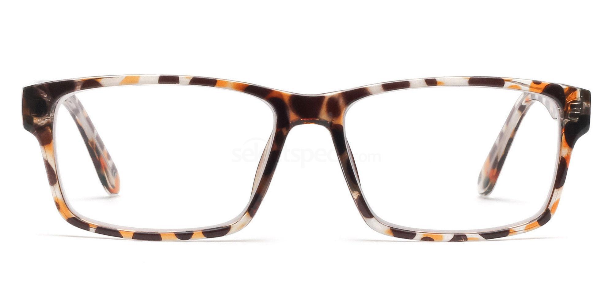 COL.06 2376 - Animal Print Glasses, Savannah