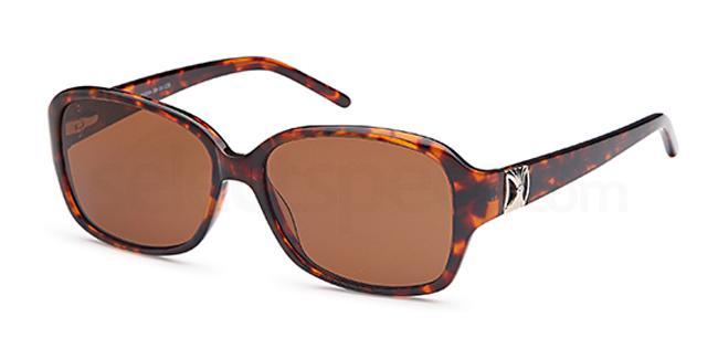 Carducci sunglasses