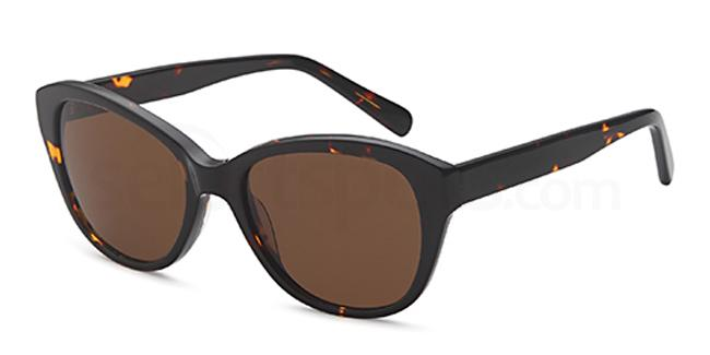 Havana CD 1060 Sunglasses, Carducci Sun