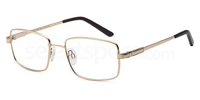 Gold 6038 Glasses, Flexit