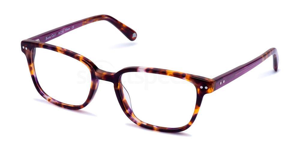 C1 BRONTE Glasses, Walter and Herbert