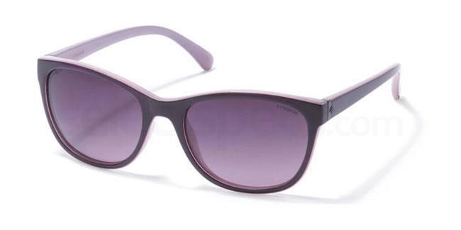 C6T (JR) P8339 Sunglasses, Polaroid