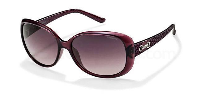 C6T (MR) P8430 Sunglasses, Polaroid