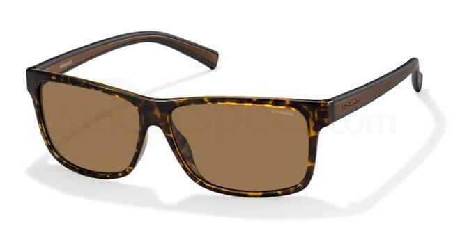 M31 (IG) PLD 2027/S Sunglasses, Polaroid