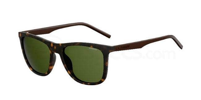 green lens sunglasses autumn