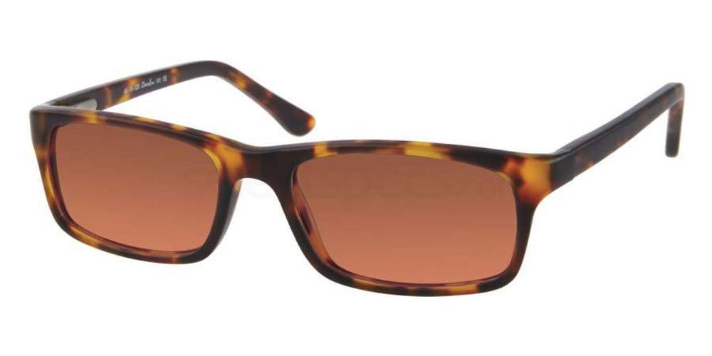 C1 709 Sunglasses, Whiz Kids