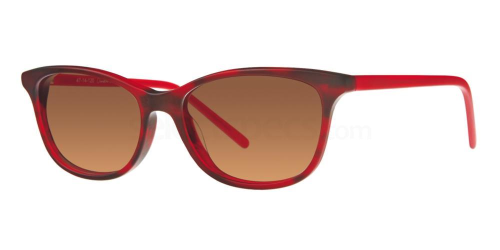 C1 713 Sunglasses, Whiz Kids