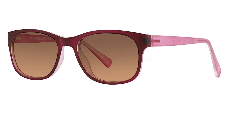 C1 729 Sunglasses, Whiz Kids