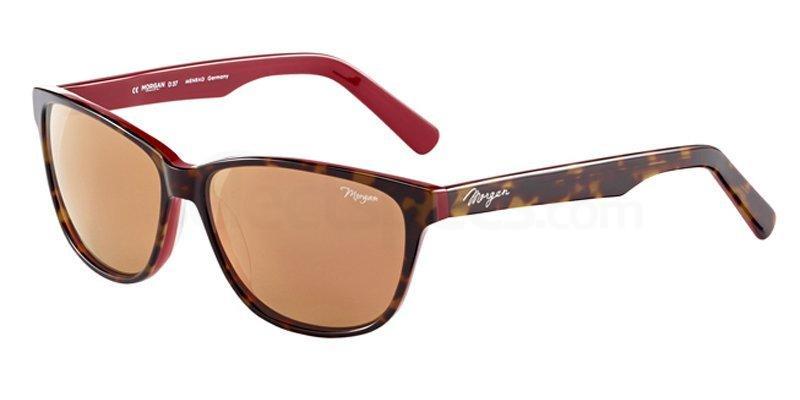 6905 207185 , MORGAN Eyewear