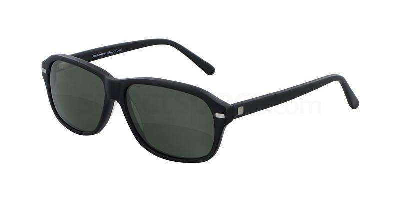 C01 POAS018 Sunglasses, POLA by OPAL