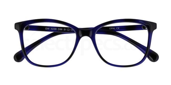 C66 OWII239 Glasses, Owlet