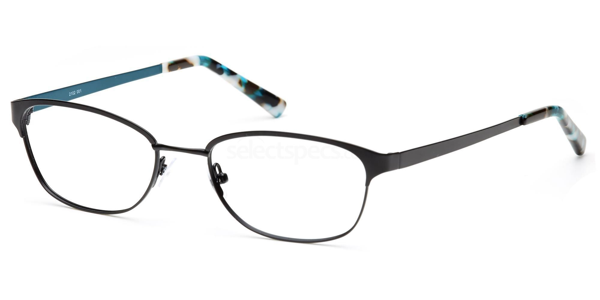 C1 FLX2102 Glasses, Flextra