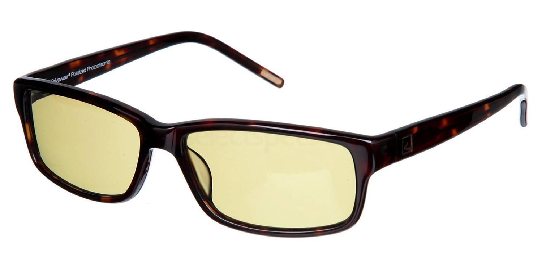 A DW8 Sunglasses, Drivewear