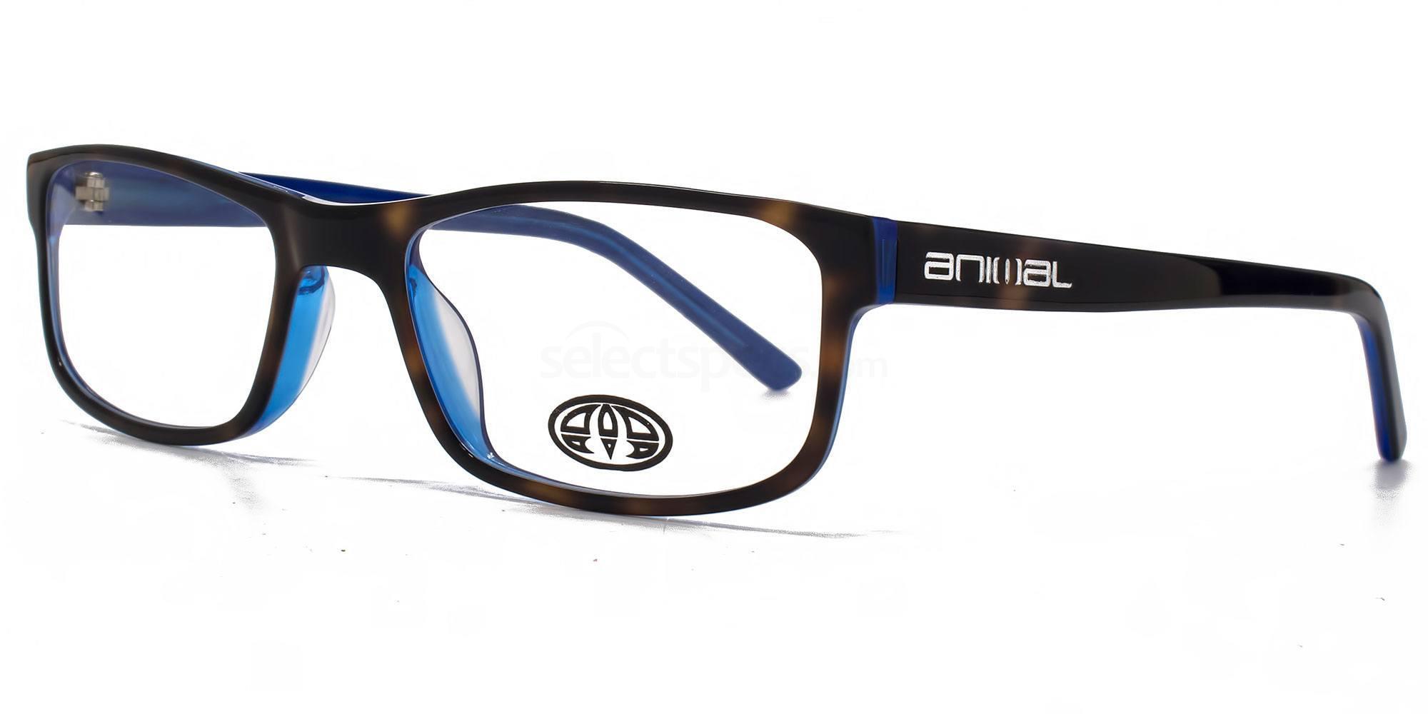 TOR ANIS002 - ASHTON Glasses, Animal