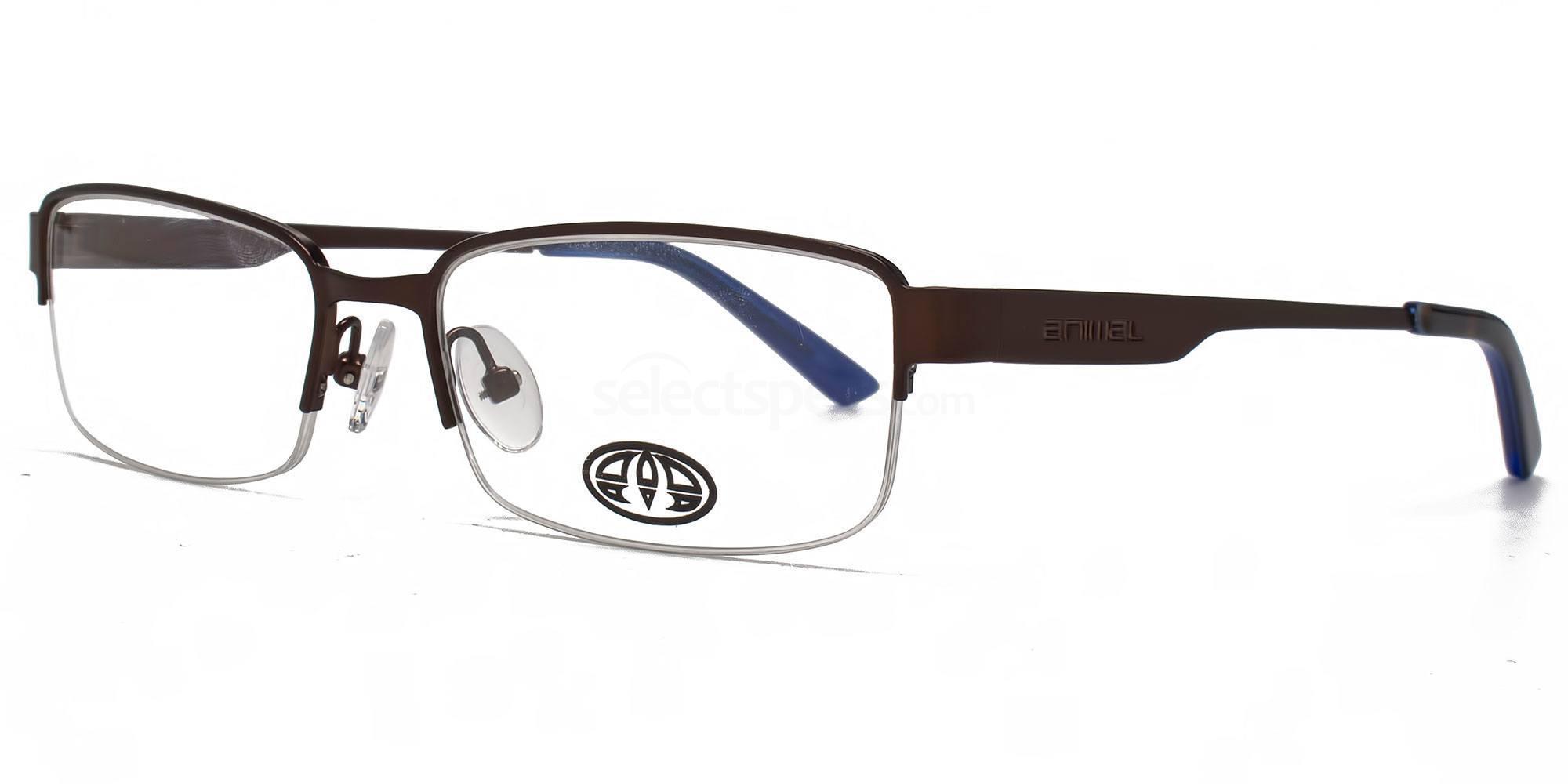 BRN ANIS005 - PAYNE Glasses, Animal