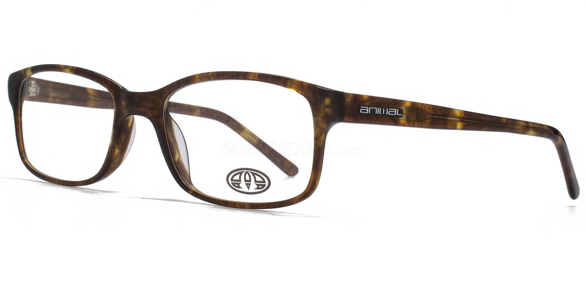 TOR ANIS016 - TIMSON Glasses, Animal