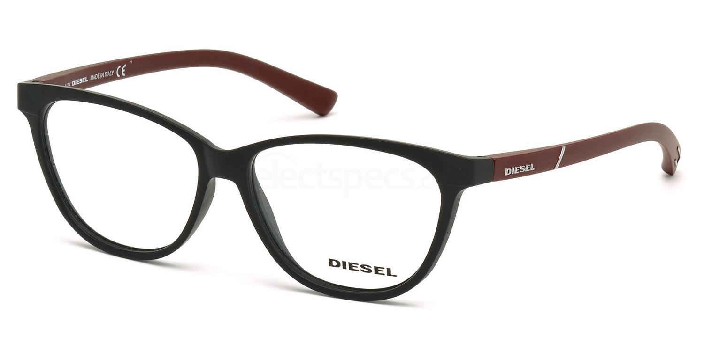 002 DL5180 Glasses, Diesel