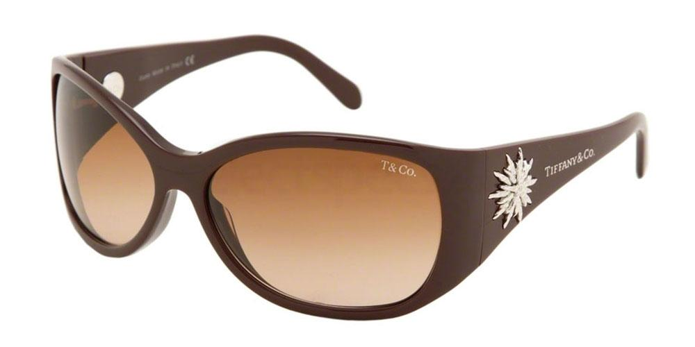 80293B TF4005G Sunglasses, Tiffany & Co.