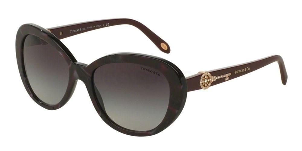 82013C TF4118B Sunglasses, Tiffany & Co.