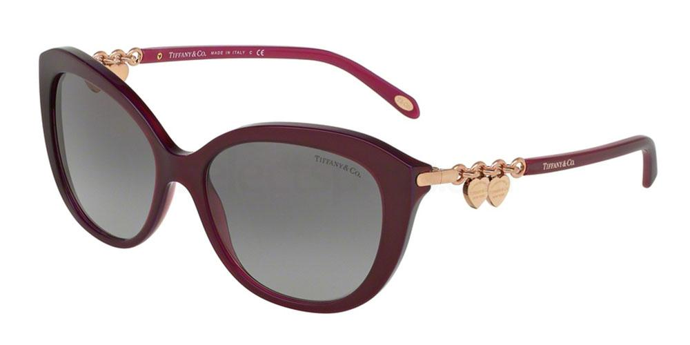 81733C TF4130 Sunglasses, Tiffany & Co.