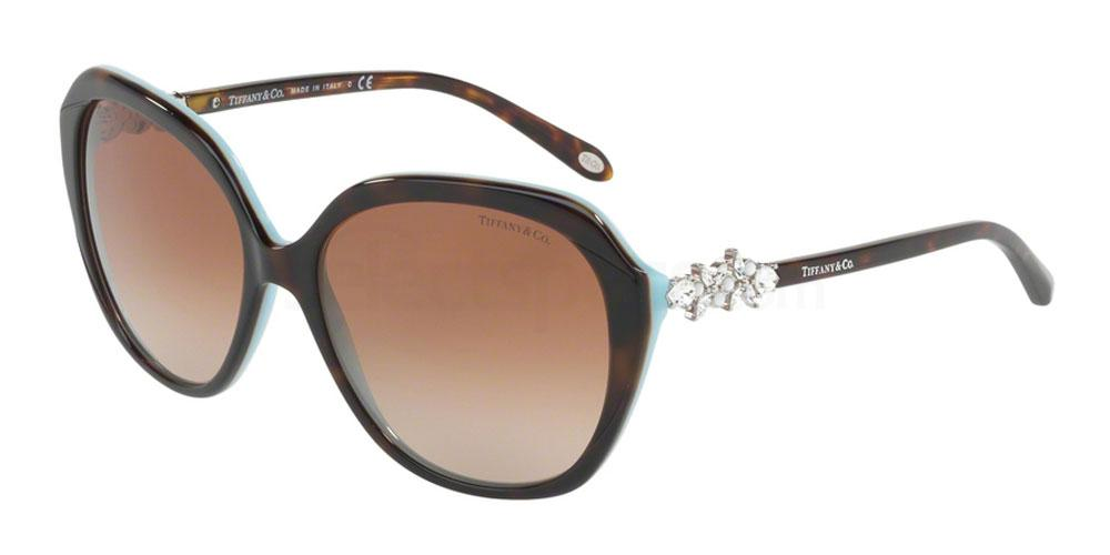 81343B TF4132HB Sunglasses, Tiffany & Co.