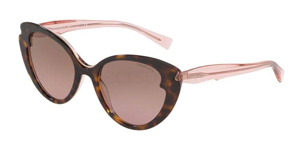 82909T TF4163 Sunglasses, Tiffany & Co.
