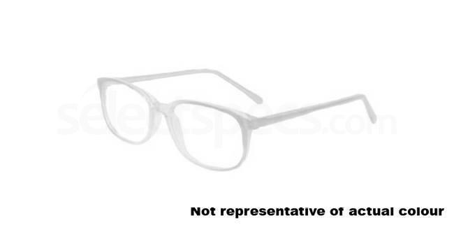 Grey Budgie 37 Glasses, Look Designs