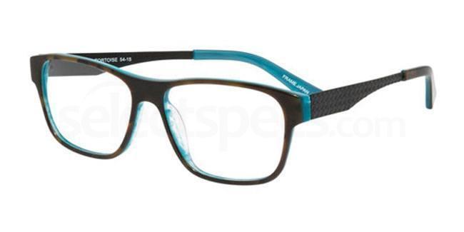 Aqua Tortoise ps201 Glasses, Booth & Bruce Design
