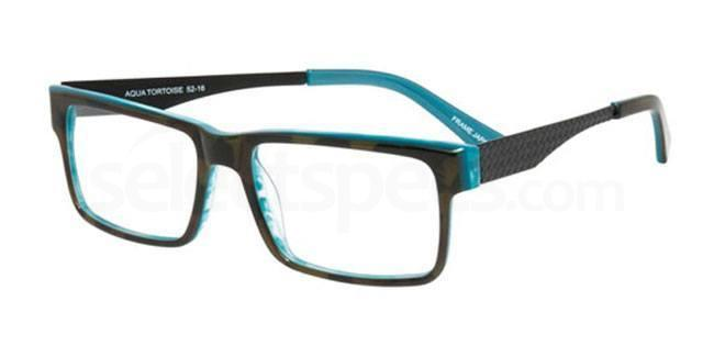 Aqua Tortoise ps202 Glasses, Booth & Bruce Design