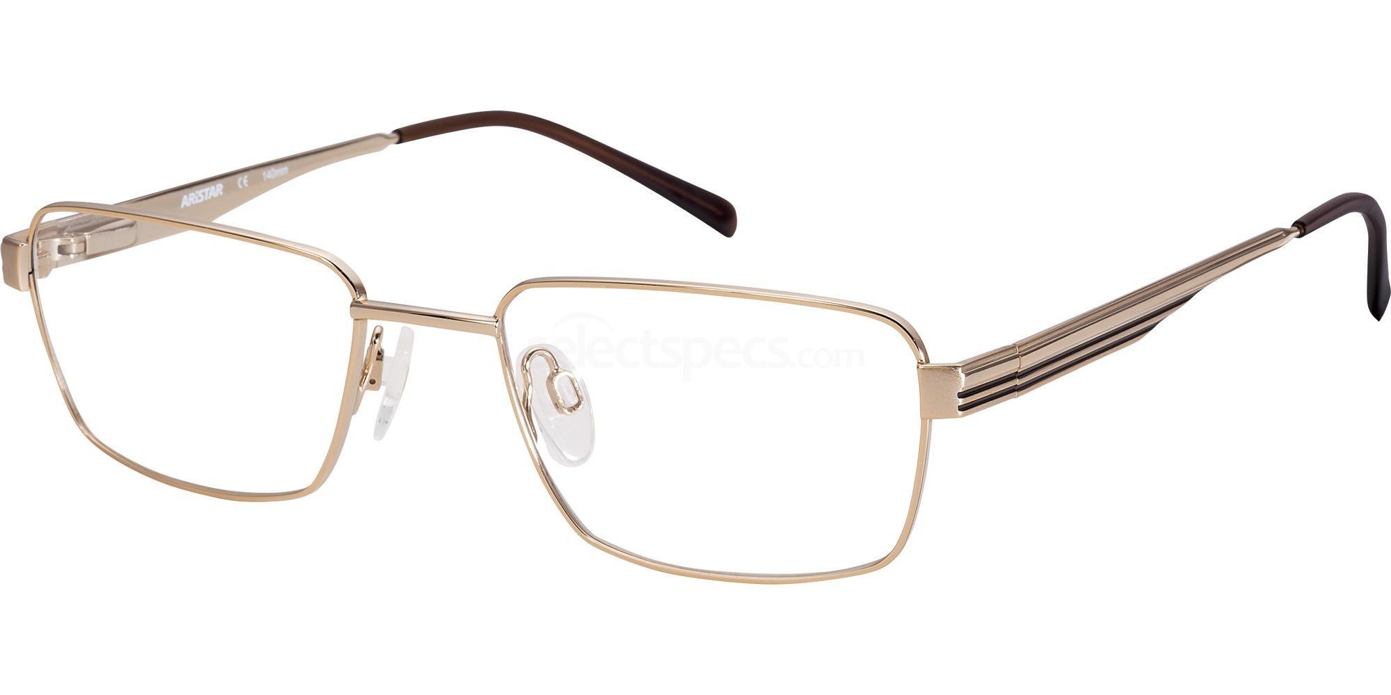 501 AR16224 Glasses, Aristar