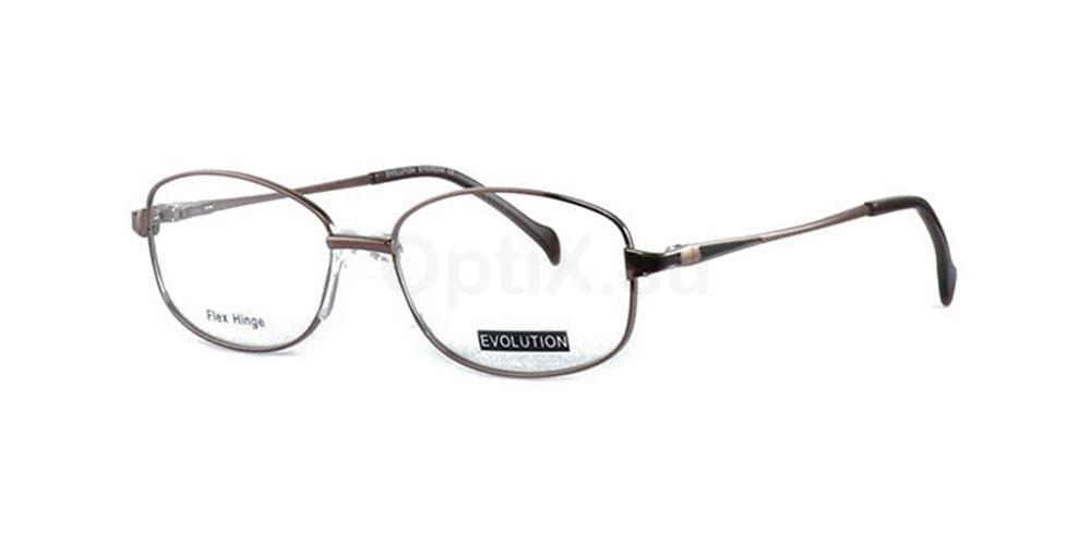 1 EV1076 Glasses, Evolution