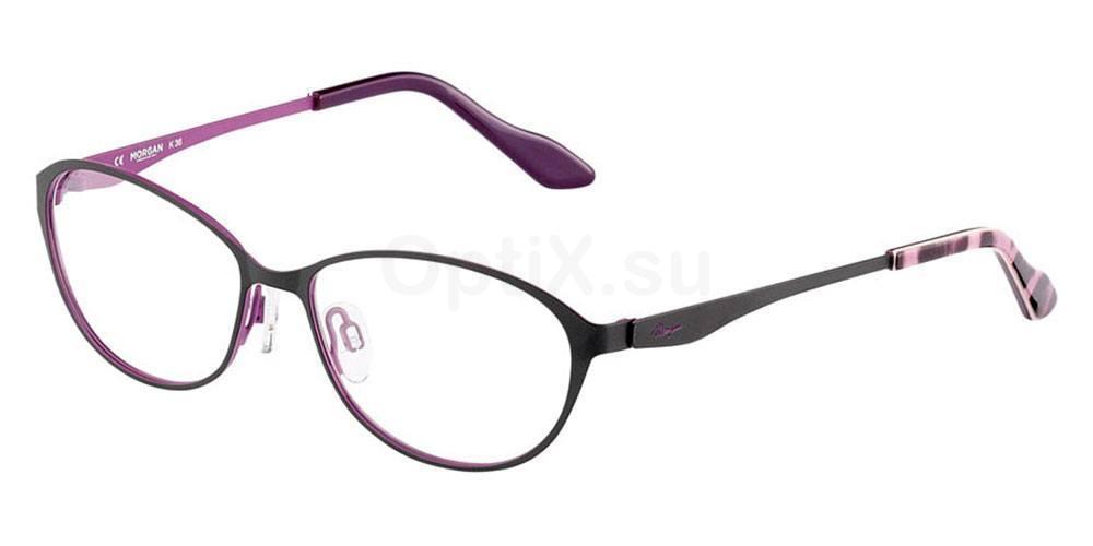 514 203151 , MORGAN Eyewear