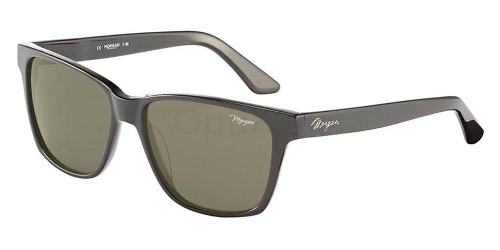 6900 207167 , MORGAN Eyewear