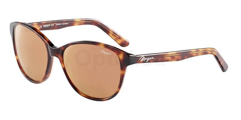 4103 207178 , MORGAN Eyewear