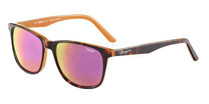 4024 207184 , MORGAN Eyewear