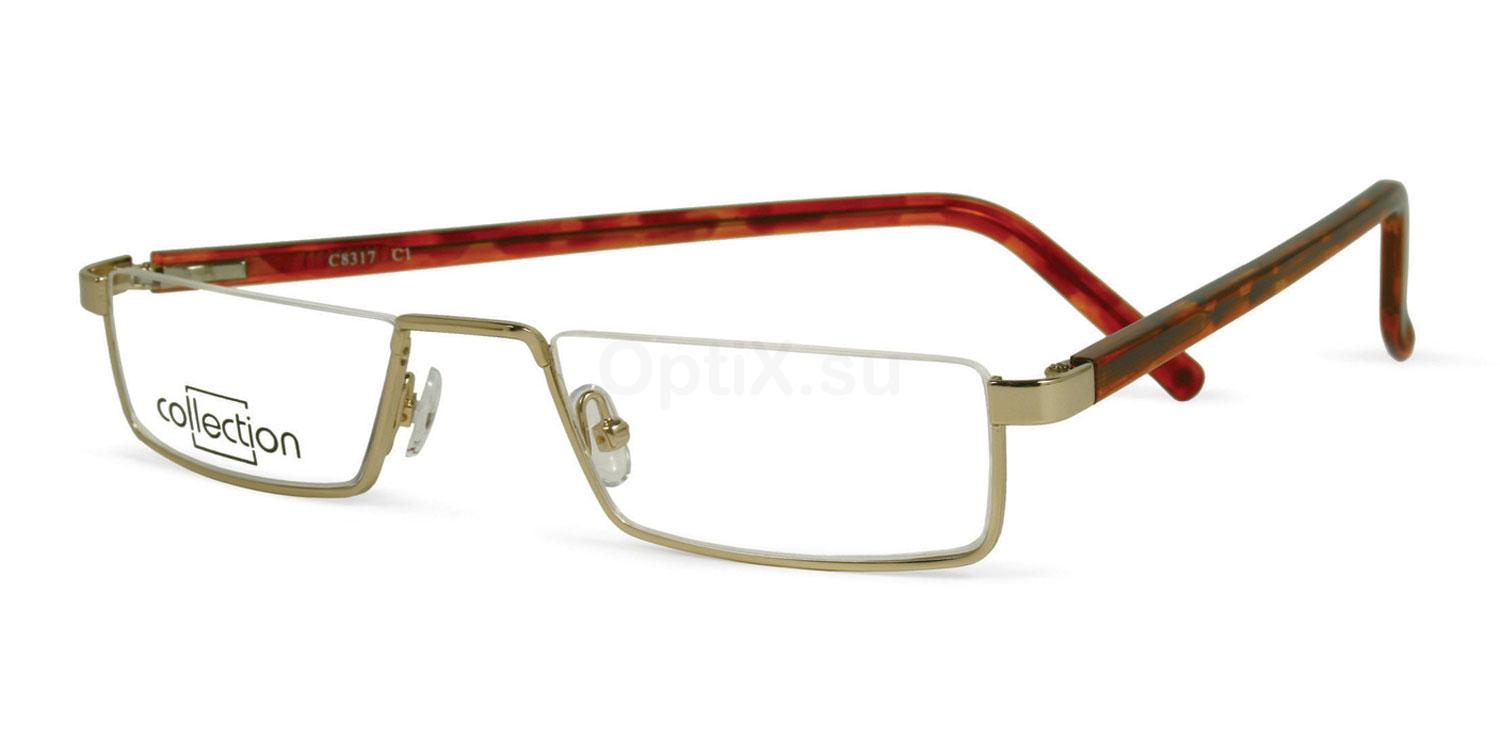 C1 C8317 Glasses, Collection Eyewear