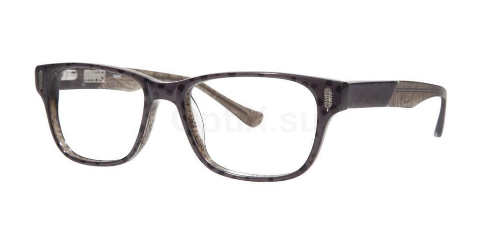 Black FEATHER Glasses, Kensie
