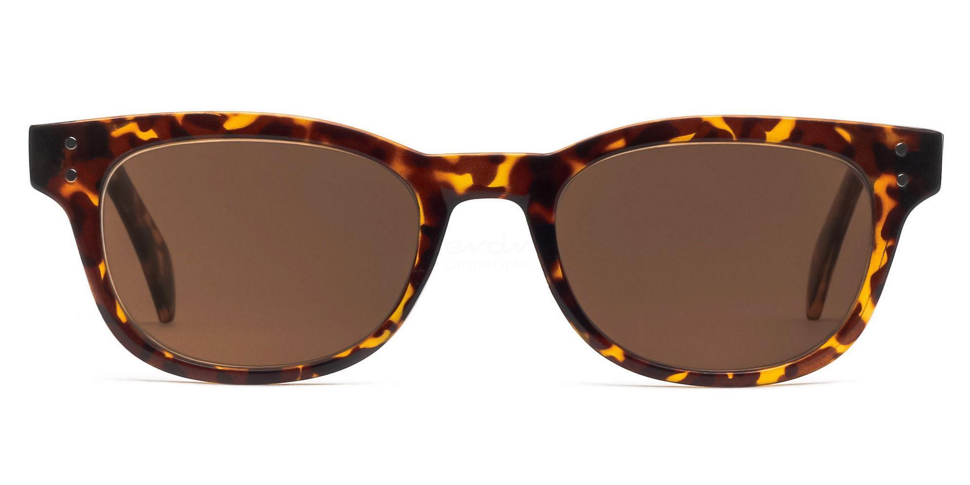 C04 Dark Brown P2249 Havana (Sunglasses) Sunglasses, Indium
