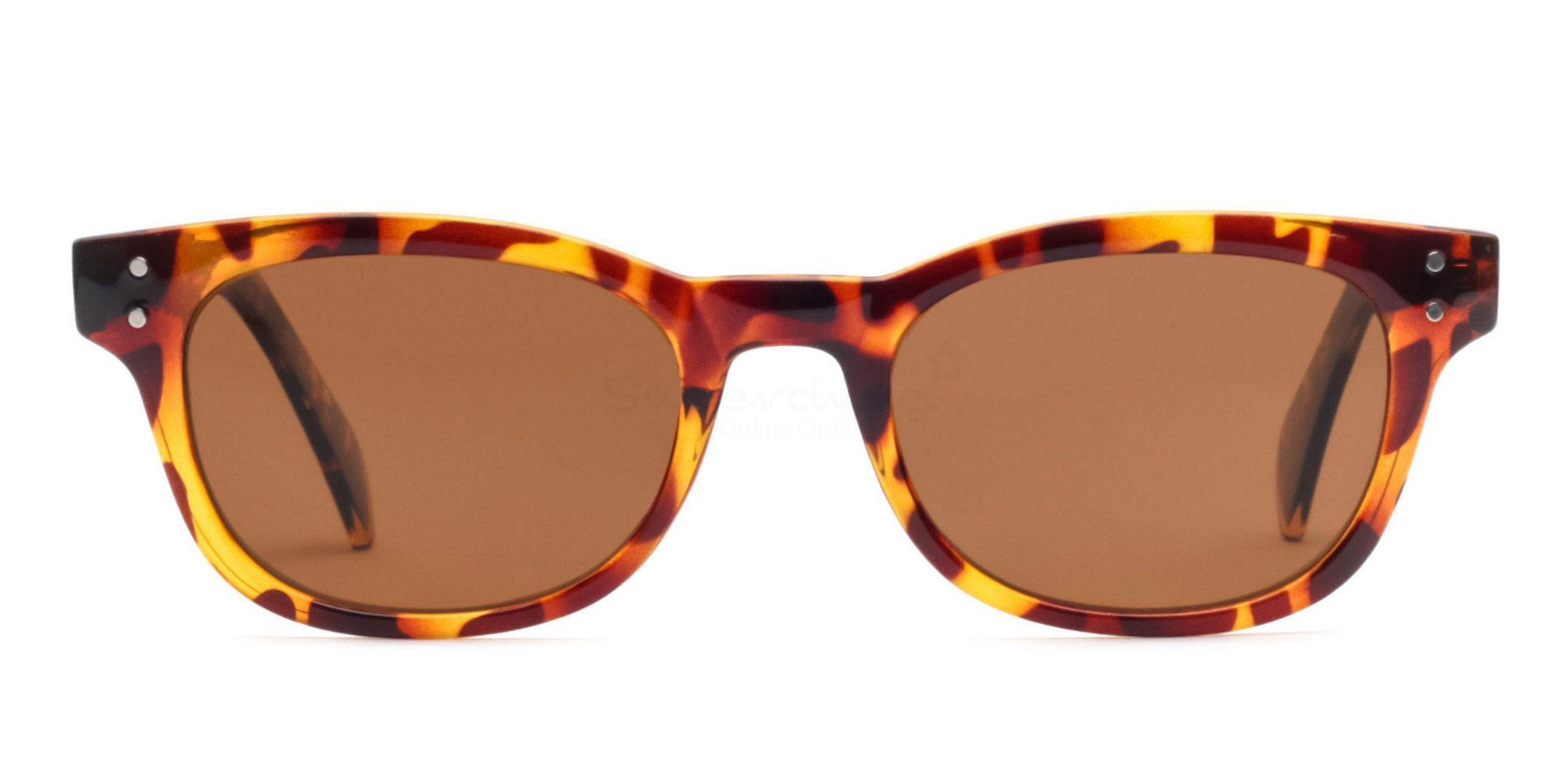 C01 Polarized Brown P2249 Havana (Polarized) Sunglasses, Neon