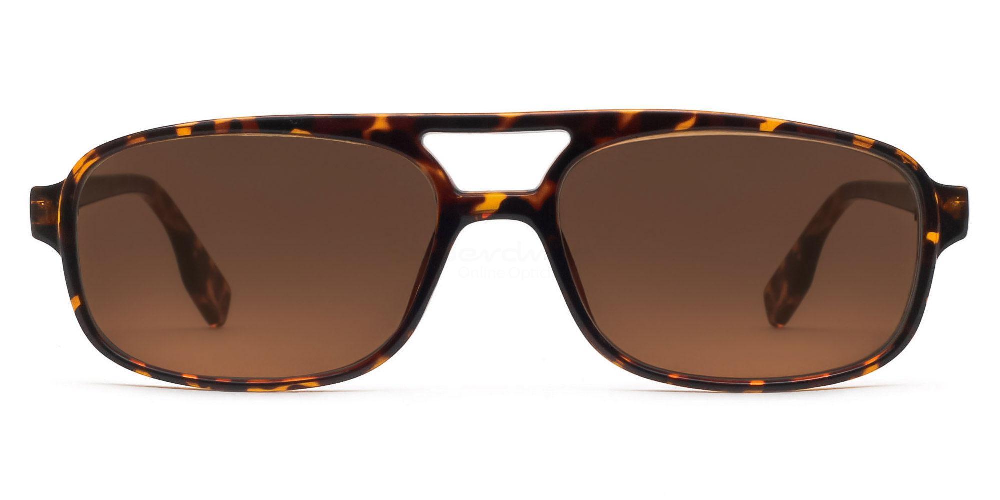 C04 Dark Brown P2395 - Demi Havana (Sunglasses) Sunglasses, Indium