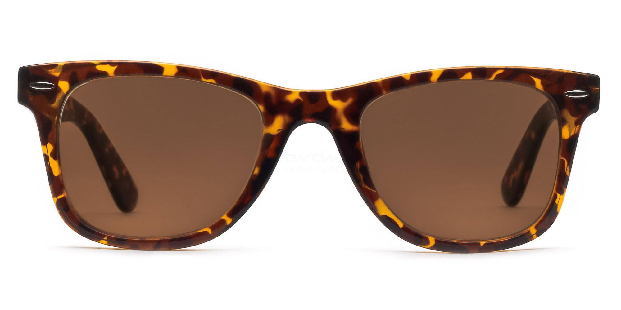 C04 Dark Brown P2429 - Havana (Sunglasses) Sunglasses, Indium