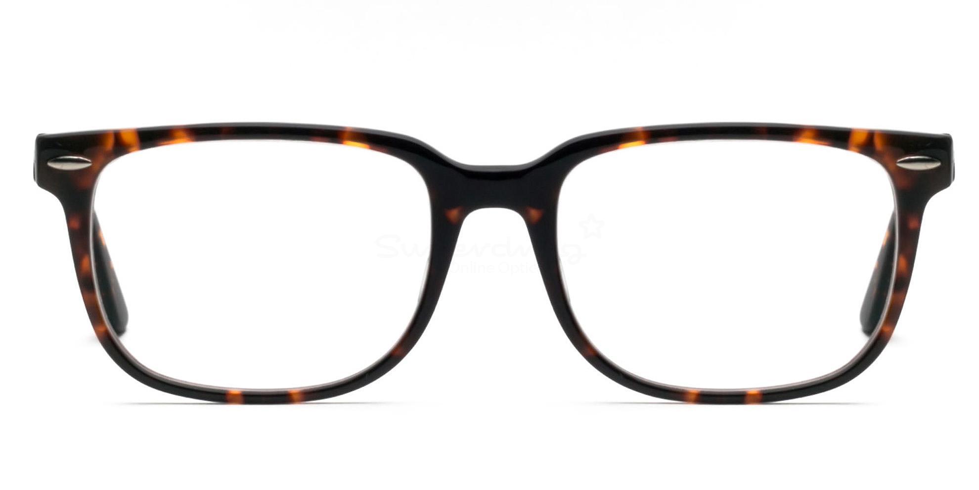 C003 E9855 Glasses, Immense