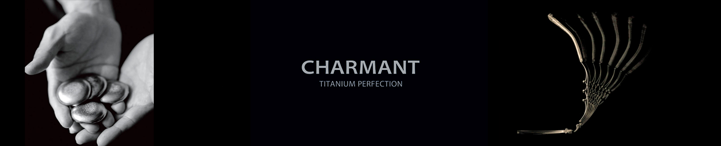 Charmant Titanium Perfection Occhiali banner